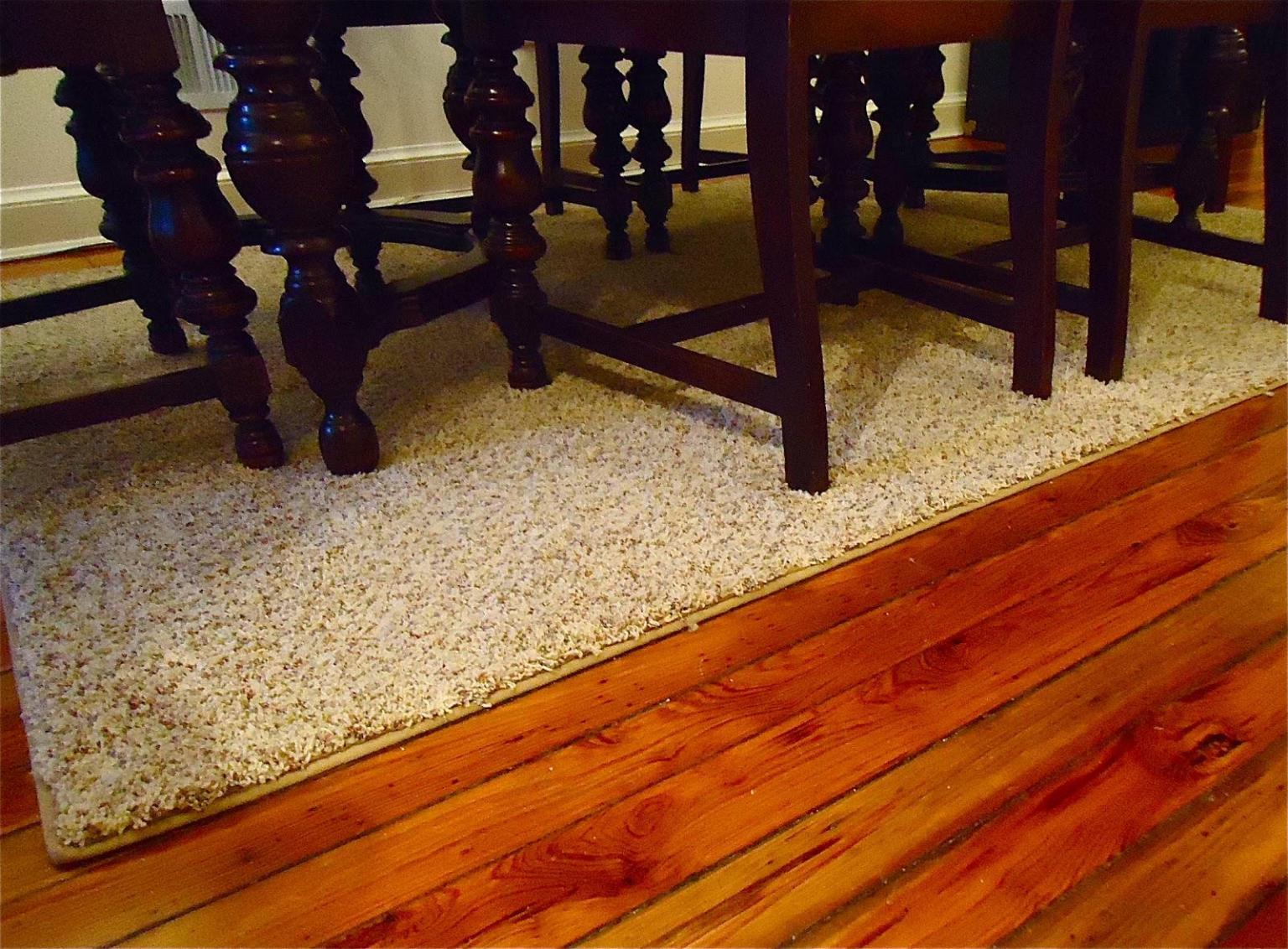 Image of: Area Rugs Clearance