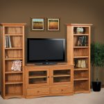 Awesome Bookcase Tv Stand