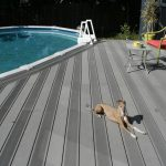 Cali Bamboo Flooring and Dogs