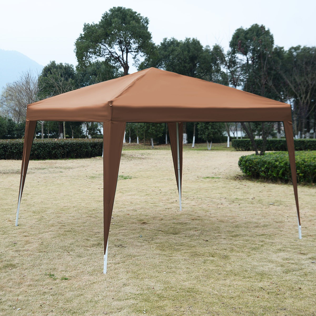 Canopy 10x10 Style