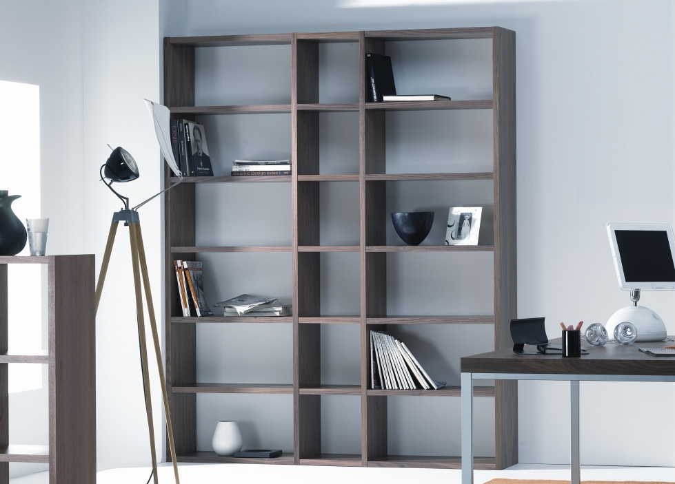 Image of: Contemporary Bookcaseis  Modern Furniture Bookcase