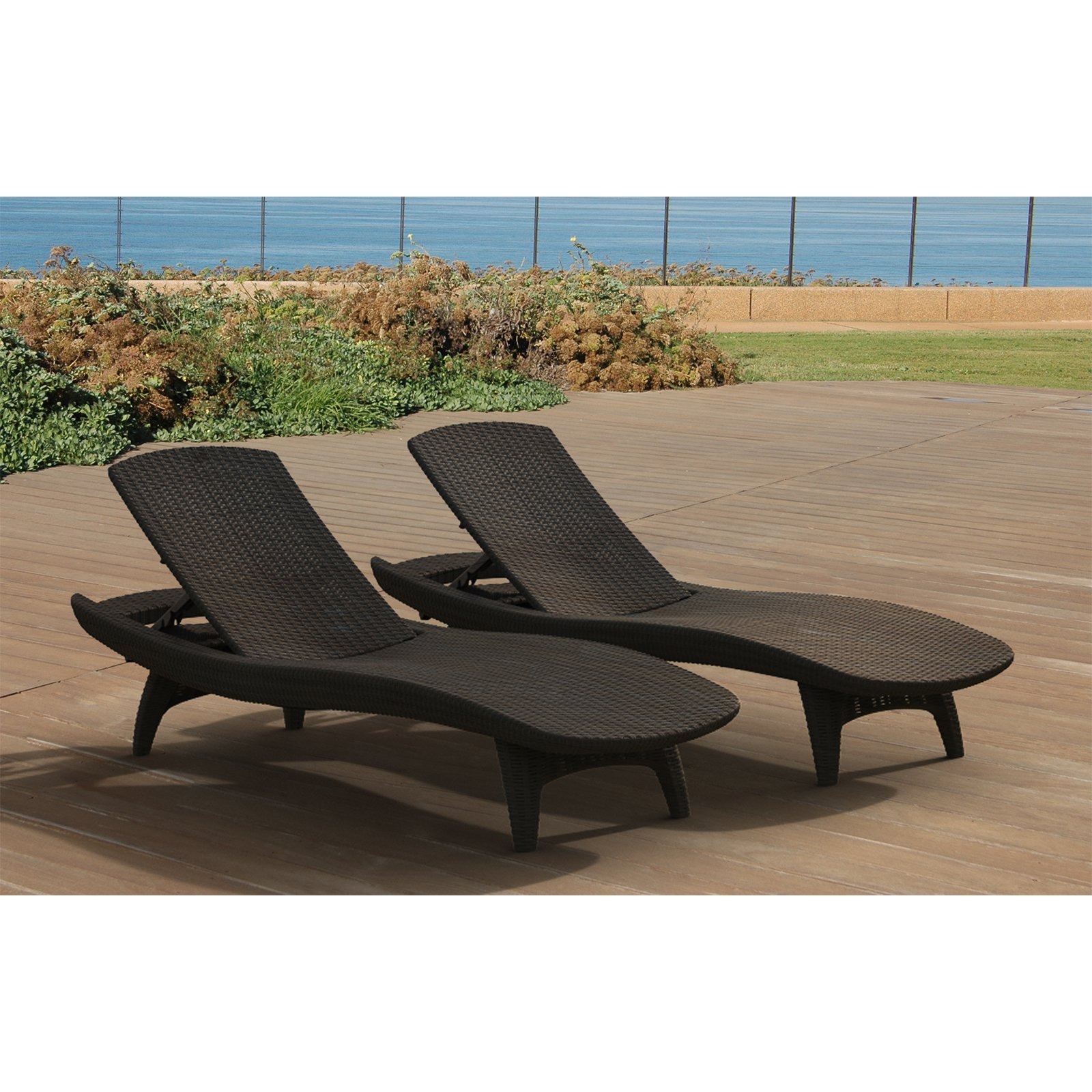 Image of: Cute Patio Chaise Lounge Chairs