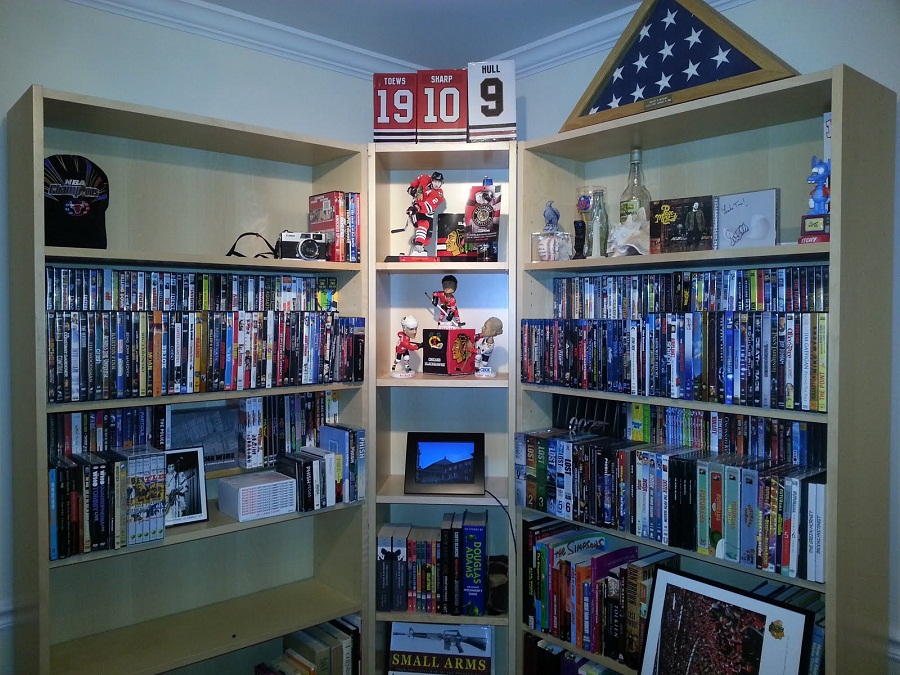 Image of: DVD Bookcase Designs