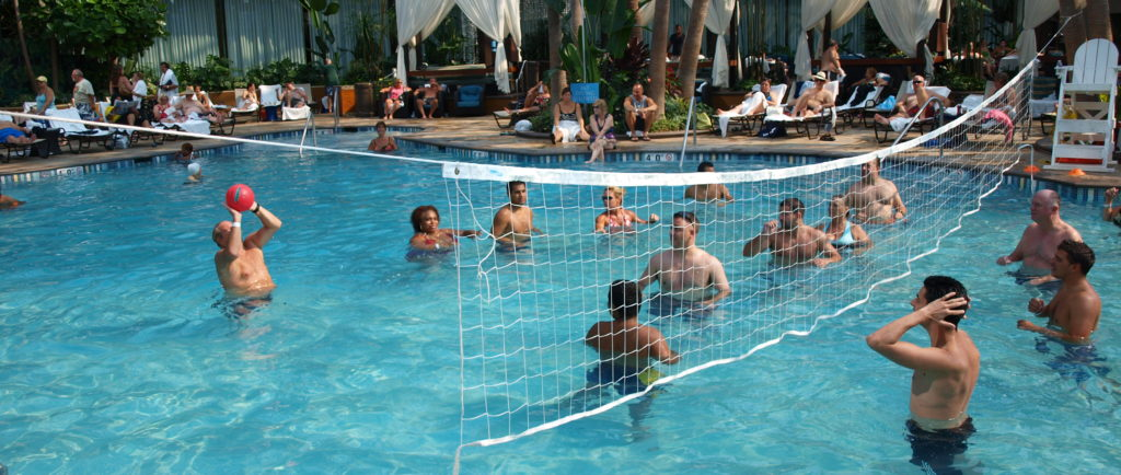 Image of: Enjoying Pool Volleyball Net