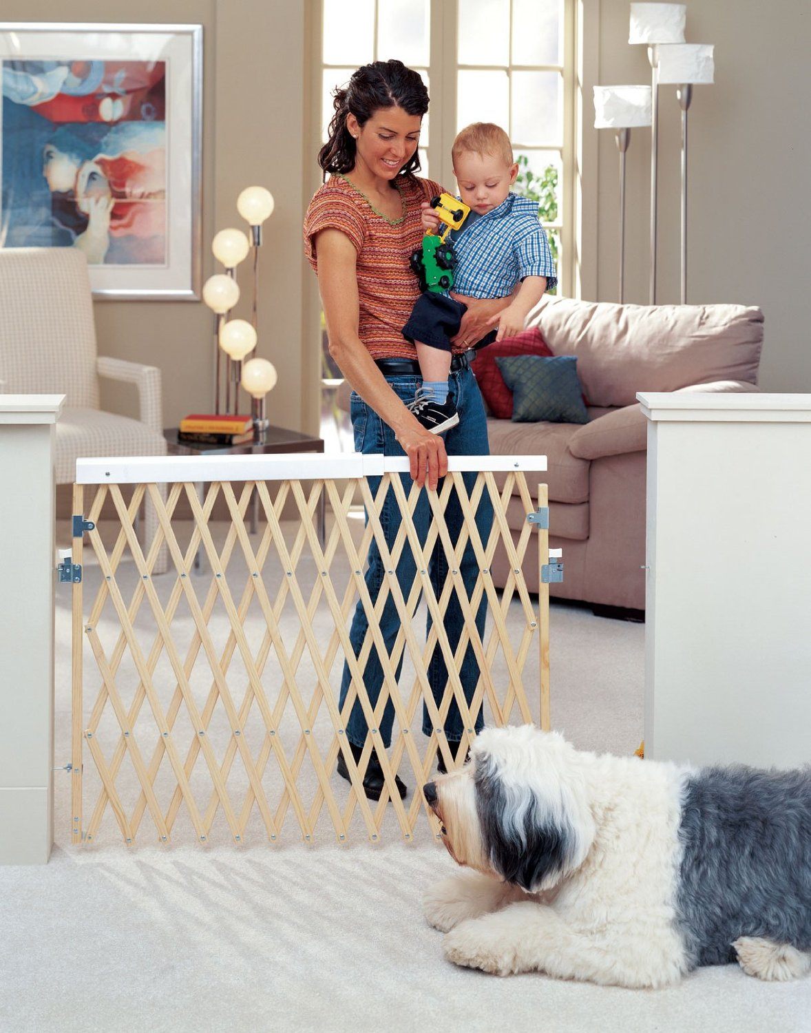 Image of: Expandable Retractable Deck Gate