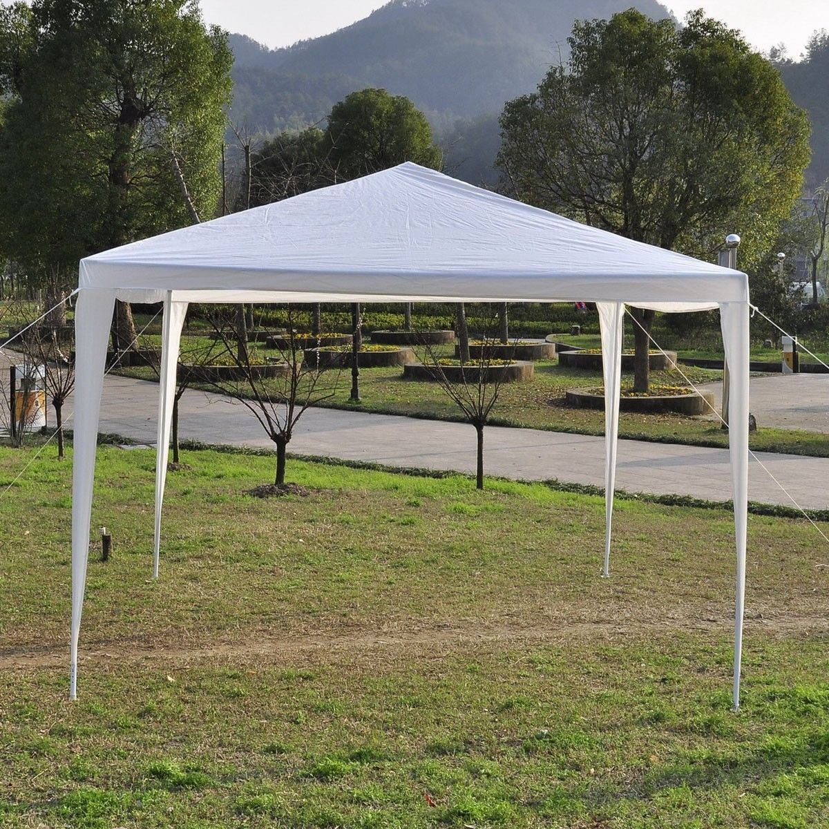 Image of: Good Canopy 10×10