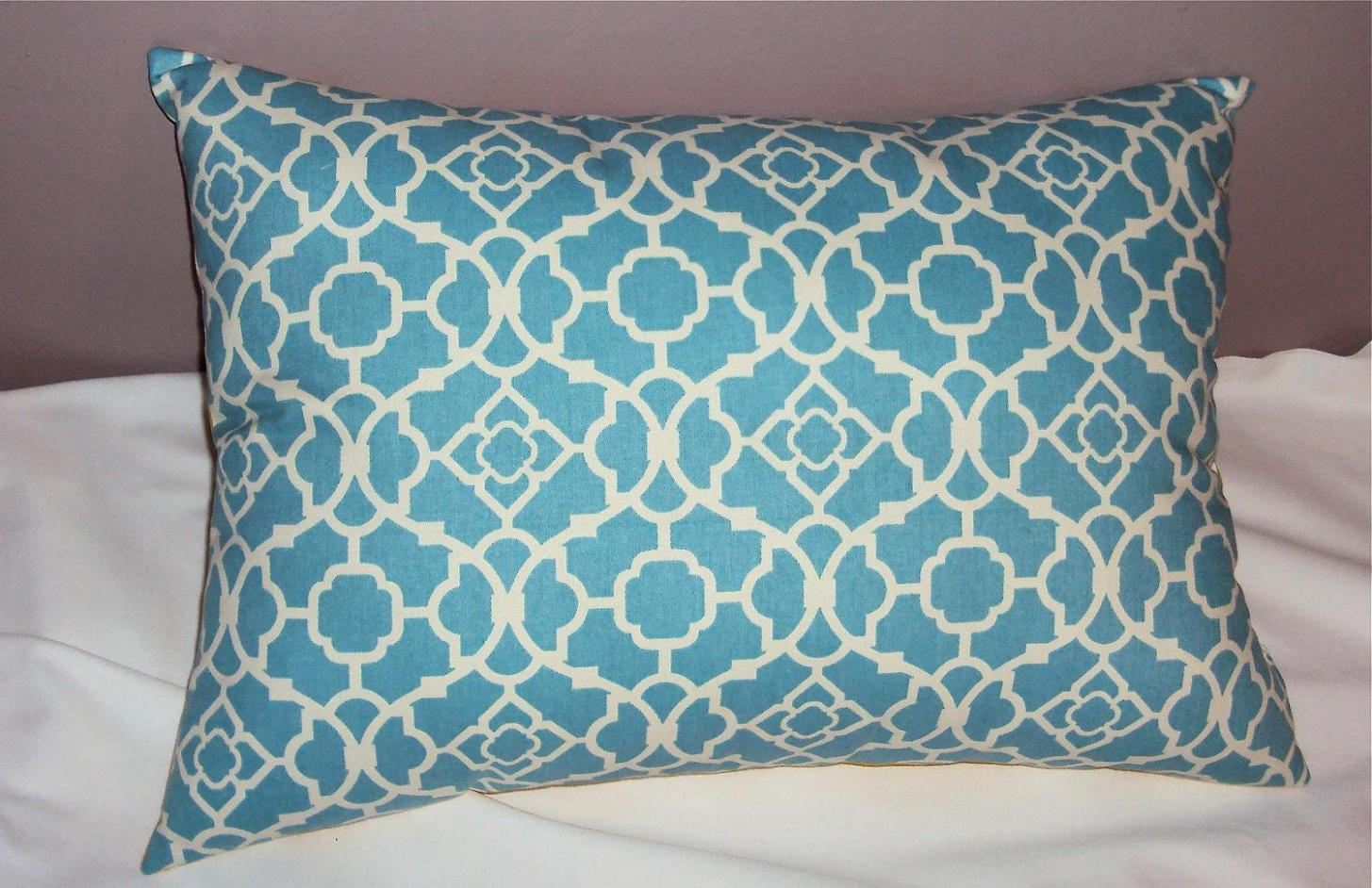 Image of: Light Turquoise Throw Pillows