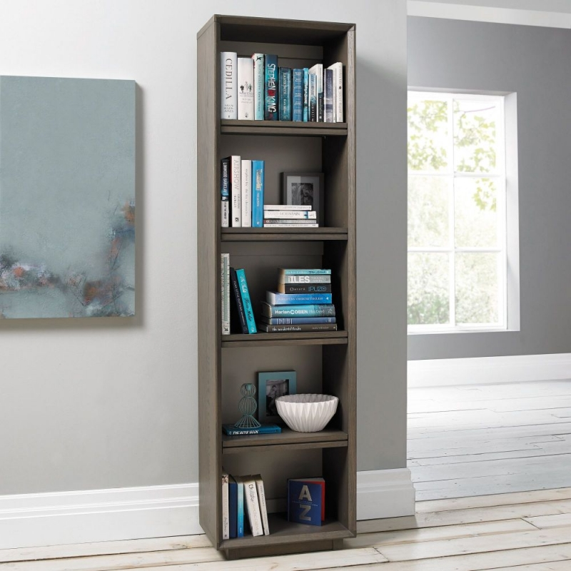 Image of: Mirrored Bookcase hight