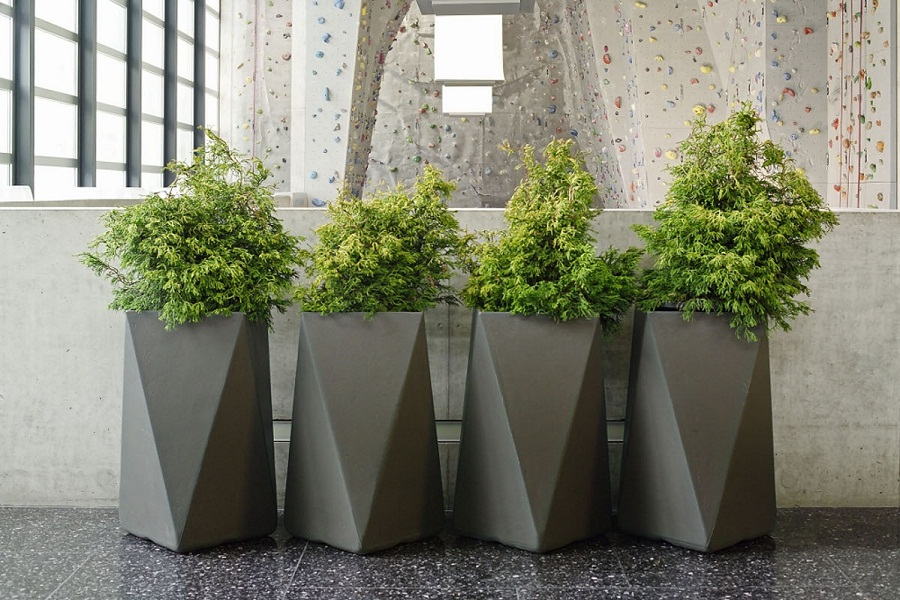 Modern Tall Outdoor Planters