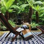 Outdoor Rugs for Patios Big Lots