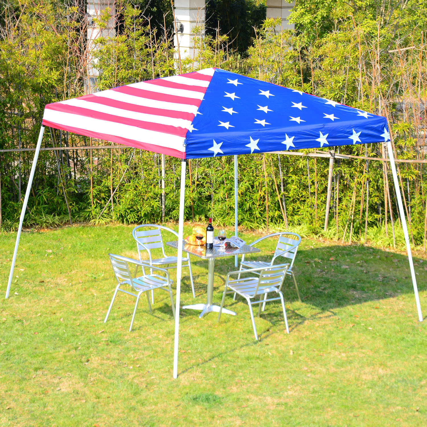 Image of: Perfect Canopy 10×10