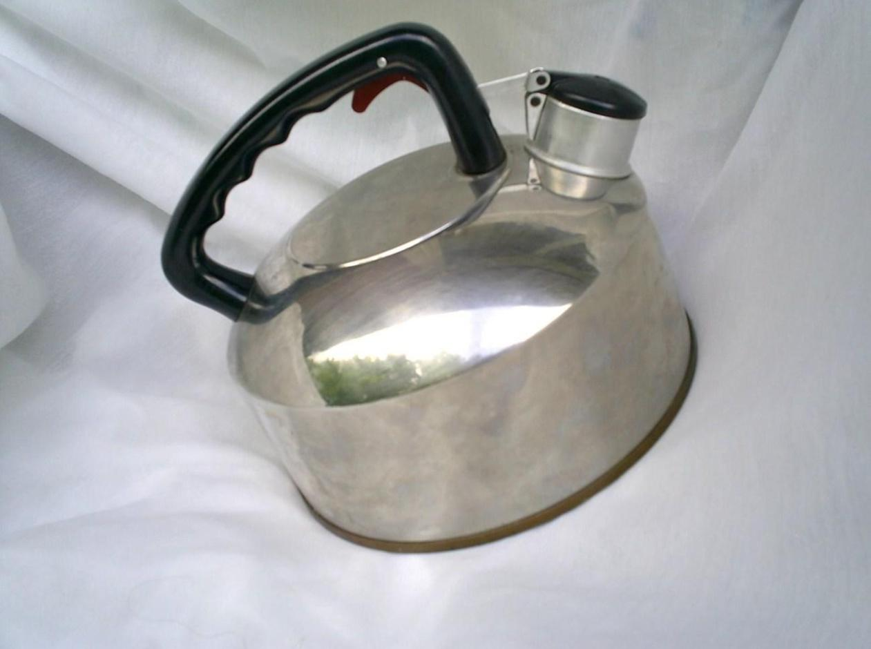 Image of: Stainless Steel Whistling Tea Kettle