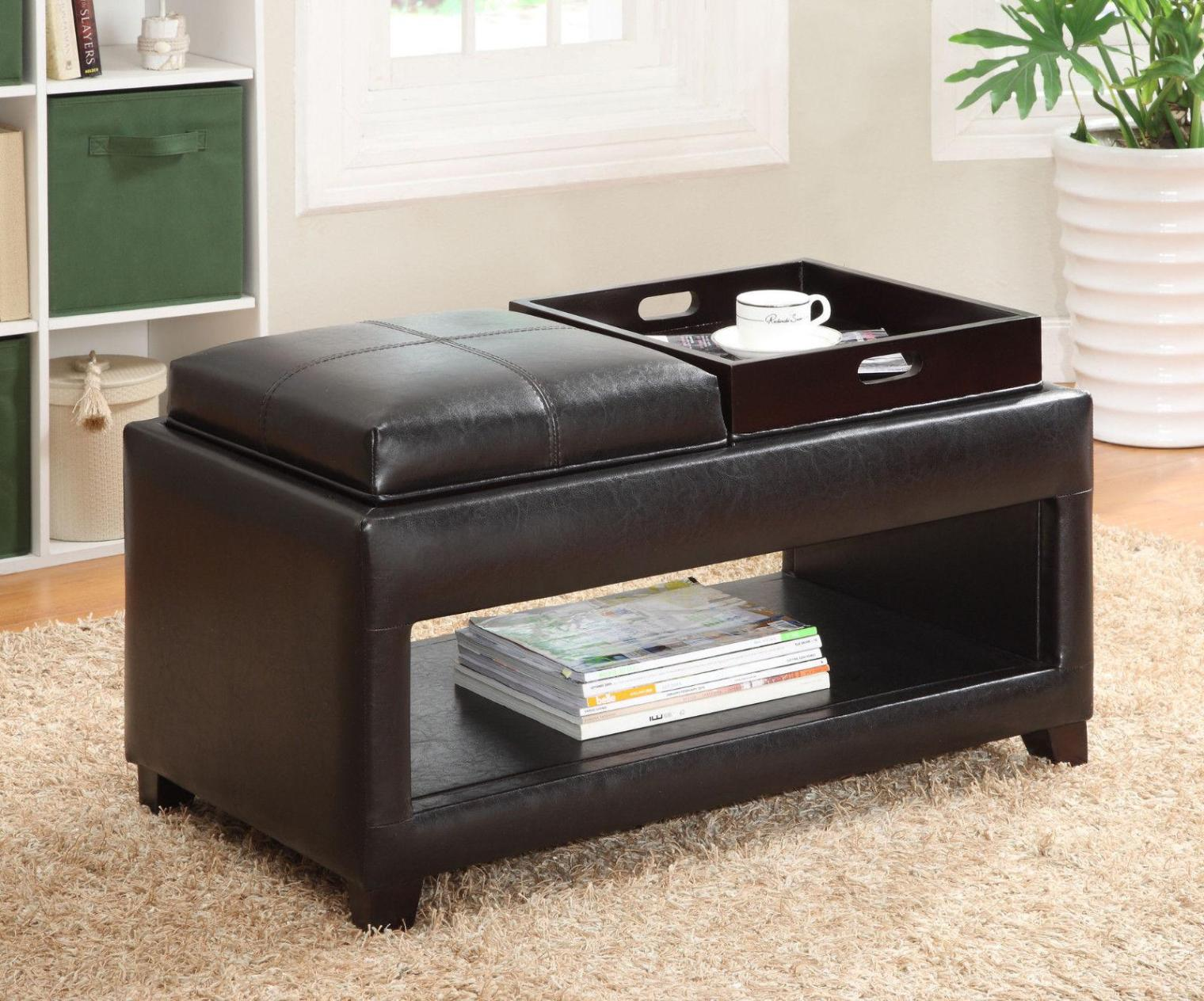 Image of: Storage Ottoman Bench With Tray