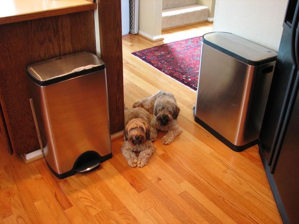 Image of: Tall Kitchen Garbage Cans