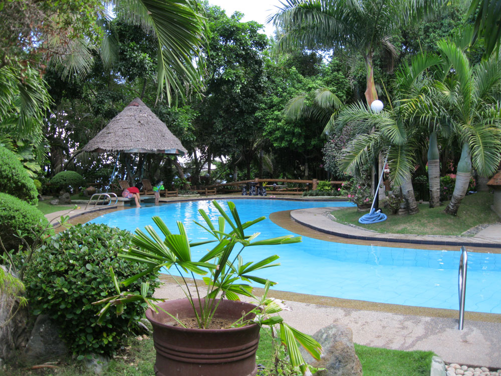 Image of: Tropical Pools Floats