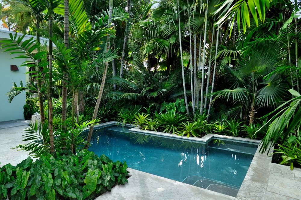 Image of: Tropical Pools Heater Parts