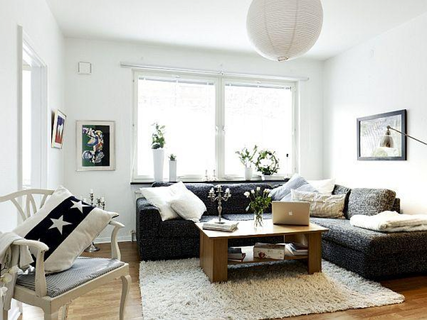 Image of: Apartment Living Room Great