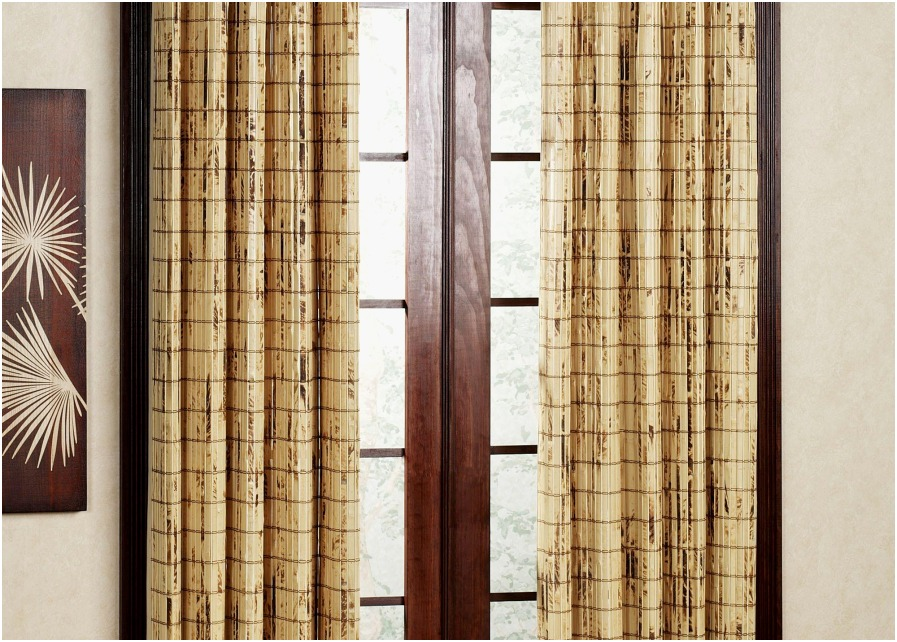 Image of: Bamboo Curtain Panel Door