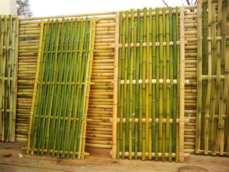 Image of: Best Bamboo Wall Panels Outdoor