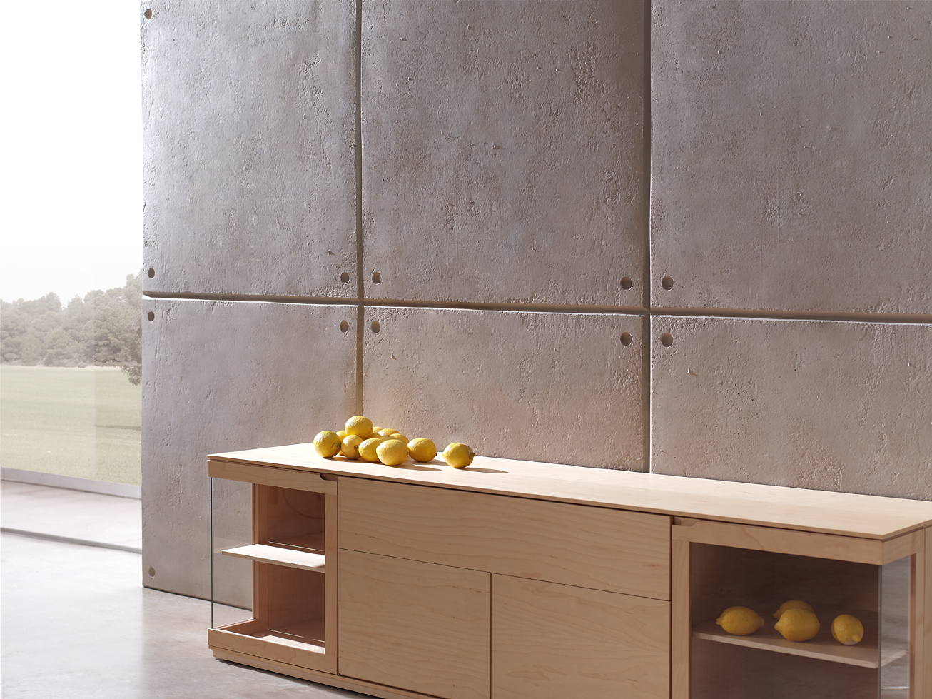 Image of: Concrete Wall Panels Type