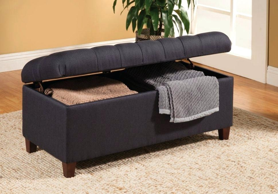 Image of: Contemporary Blanket Storage Ideas
