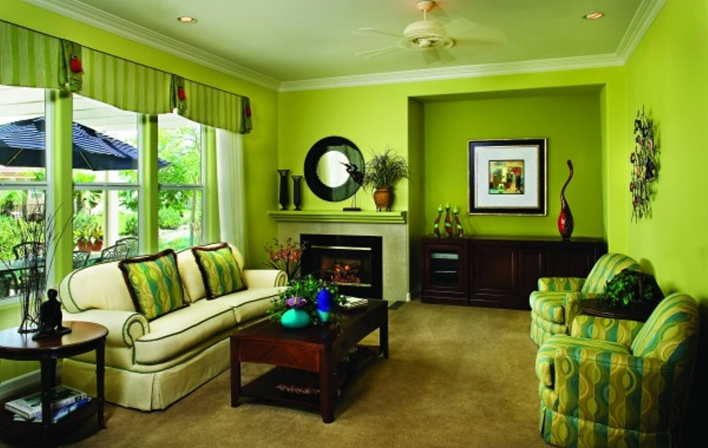 Image of: Green Living Room Walls Wooden
