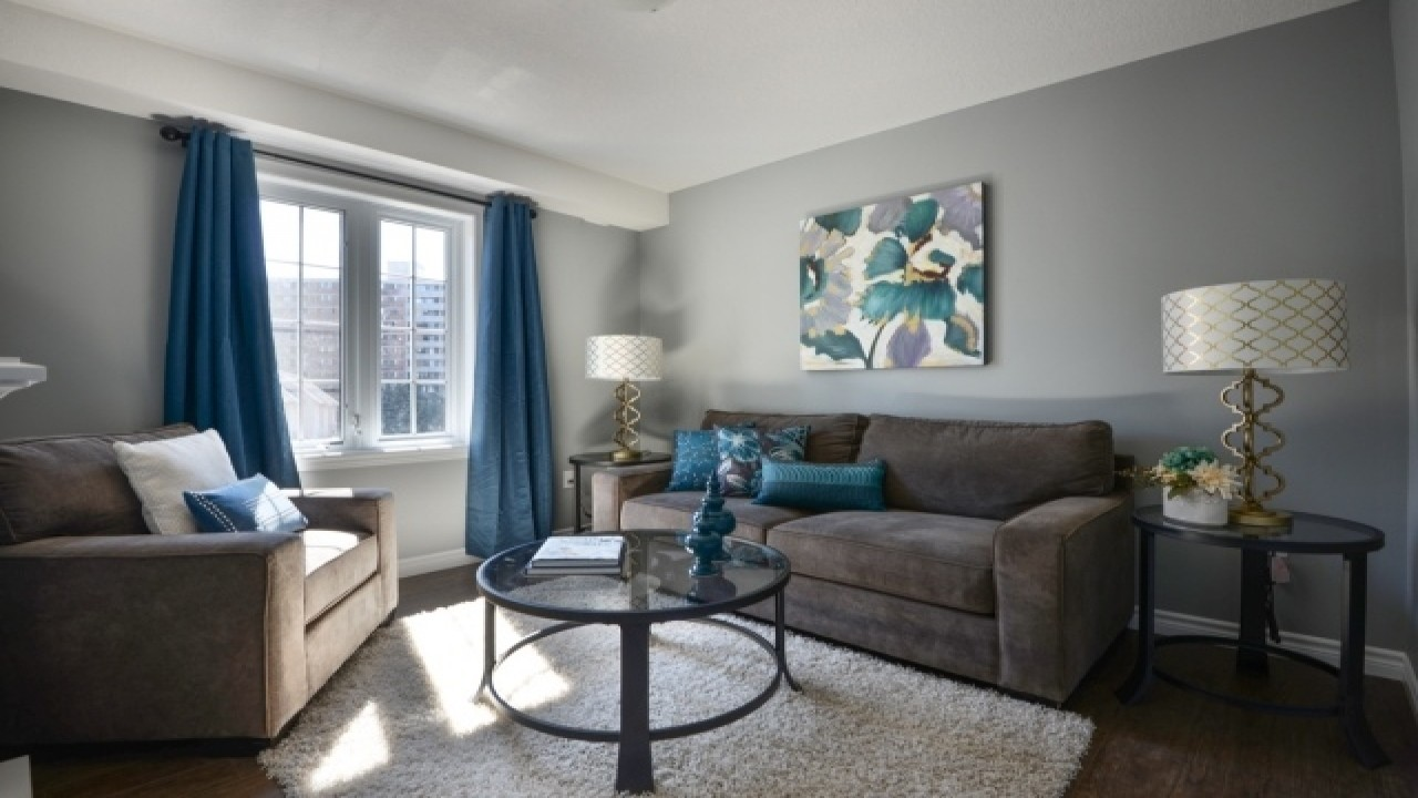 Image of: Grey and Brown Living Room Blue