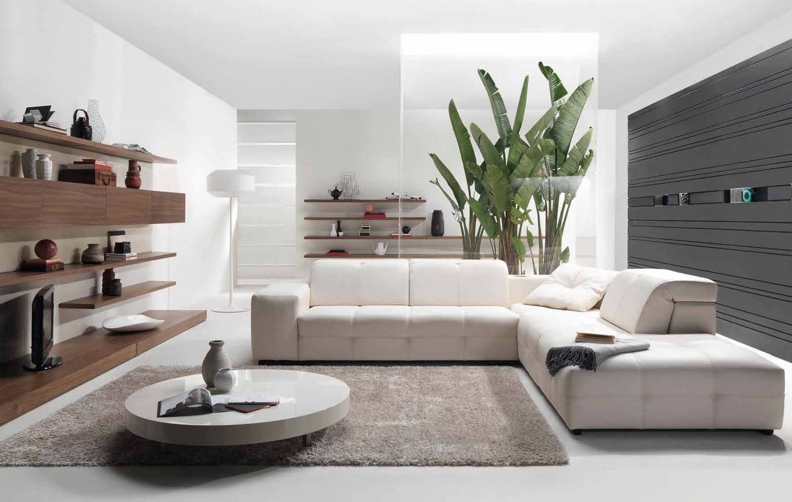 Image of: Living Room Modern Style