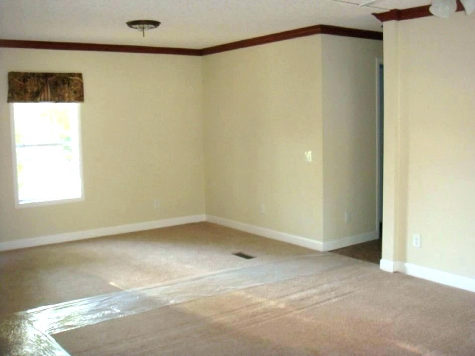 Image of: Mobile Home Wall Panels Paint
