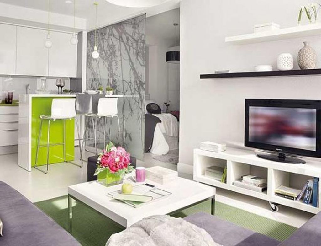 Image of: Modern Small Apartment Storage Ideas