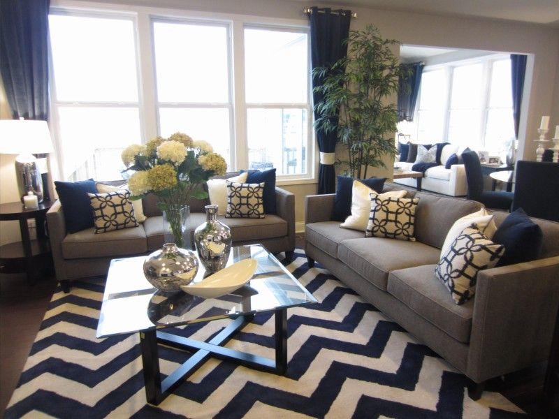Image of: Navy Living Room Unique