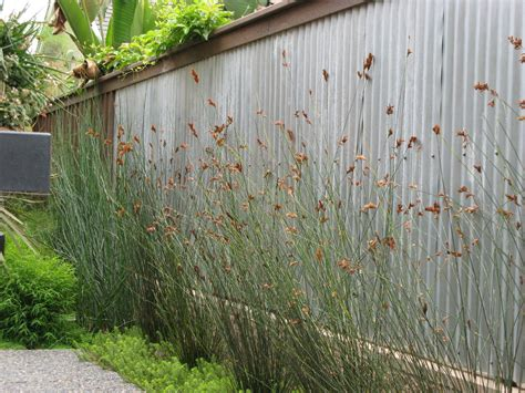 Image of: Outdoor Plastic Wall Panels