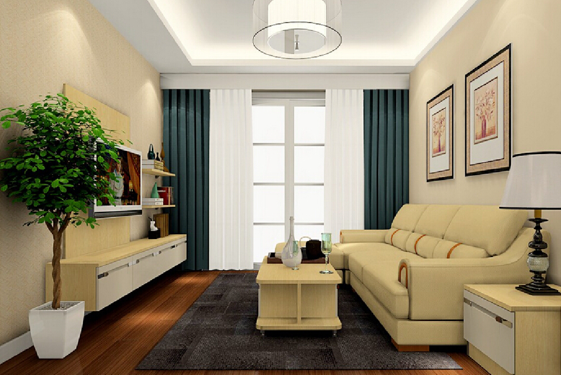 Image of: Small Living Room Design Elegant