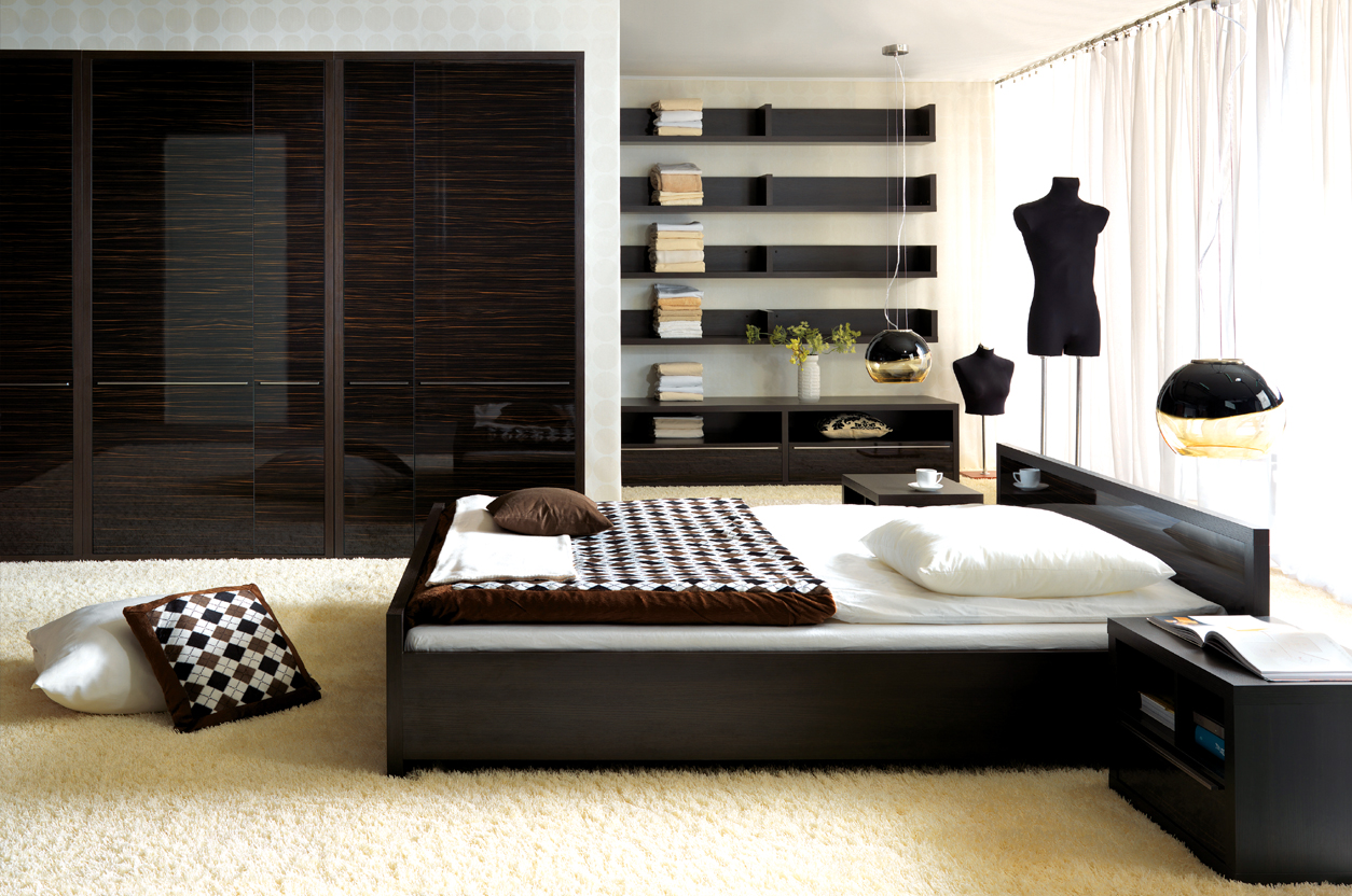 Image of: Contemporary Bed Sets Wood