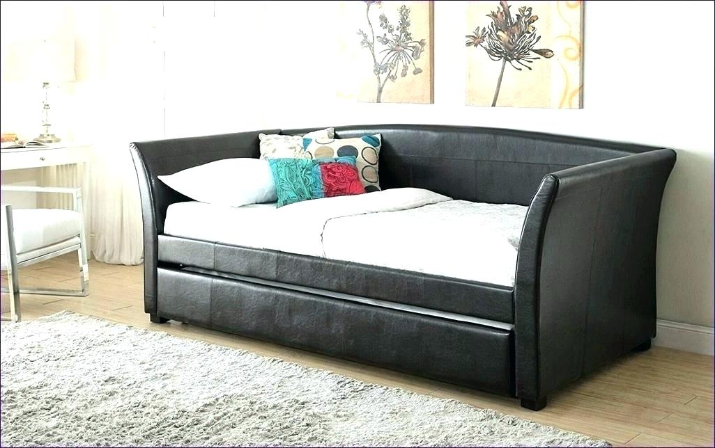 Image of: Sofa Full Size Trundle Beds for Adults