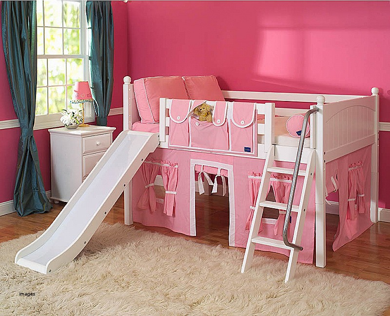 Image of: Toddler Bunk Bed with Slide and Rug