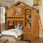 Treehouse Loft Bed for Adults