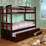 Twin Loft Bed with Trundle