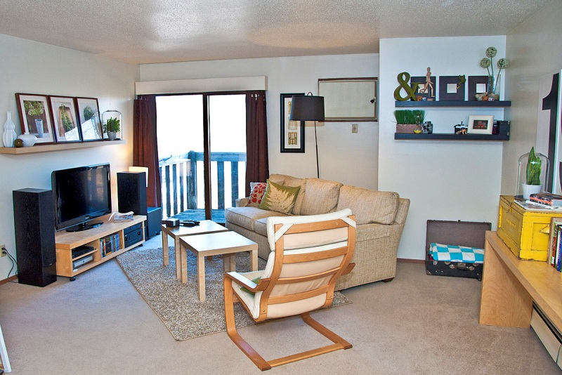 Image of: Simple Apartment Living Room Decorating Ideas