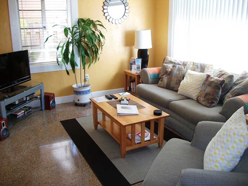 Image of: Simple Decorating Ideas For Small Living Room
