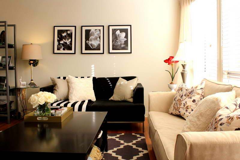 Image of: Best Small Living Room Decorating Ideas